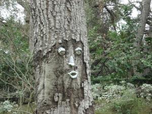 talkingtree